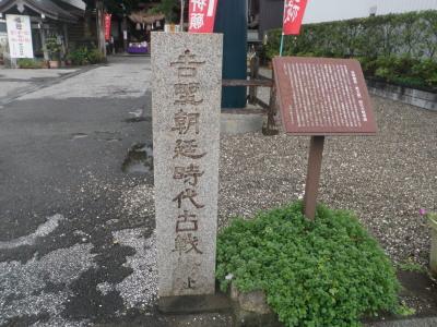 kochi1.jpg